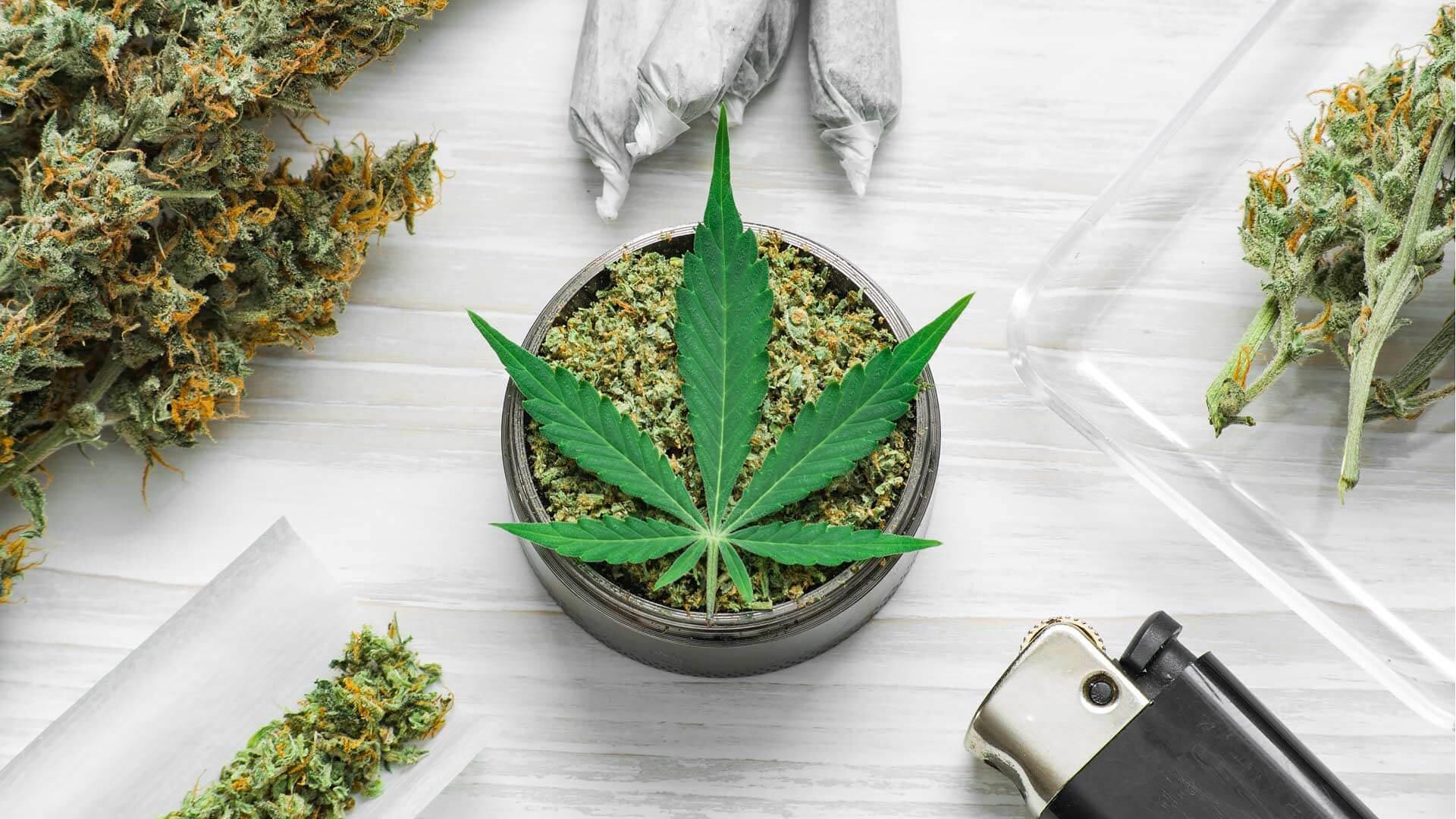 The Influence of Cannabis on Social Media