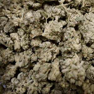 Dispensary in Lee Mass Cannabis