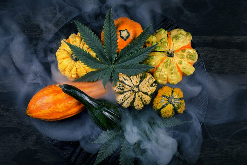 cannabis-seasonal-recommendations-for-fall