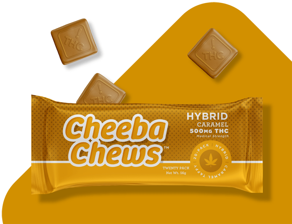 CHEEBA CHEW HYBRID