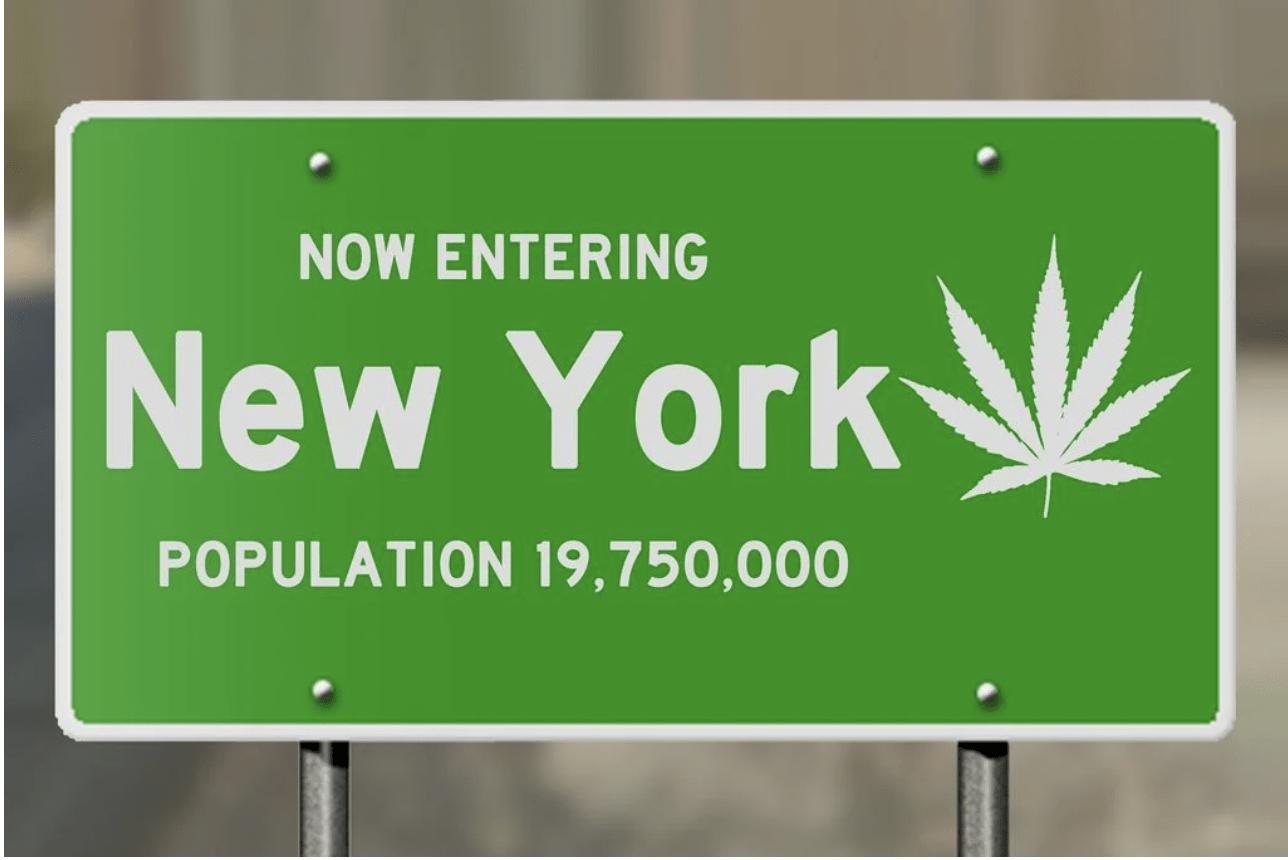 new york legalizes cannabis canna provisions chemdog