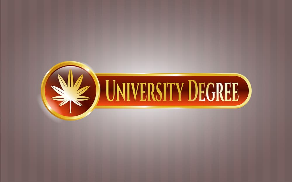 Canna Provisions Group Best College Degrees CannabisIndustry
