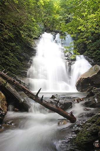 berkshires waterfalls hiking cascade canna provisions cannabis marijuana